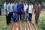 Video: శేషాచలంలో స్మగ్లర్ల అరెస్ట్..ఎర్రచందనం స్వాధీనం