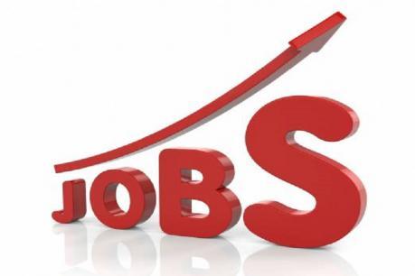 Jobs: ఆ రంగంలో కొత్తగా 1,49,000 ఉద్యోగాలు