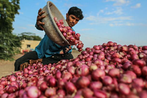 Onion Price: ఆకాశమార్గం పట్టిన ఉల్లిధరలు...సామాన్యులకు అందనంత ఎత్తులో...